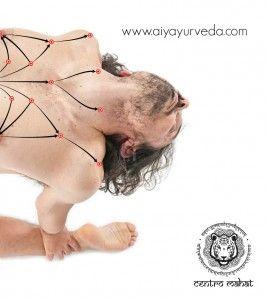 El Yoga Ayurvédico