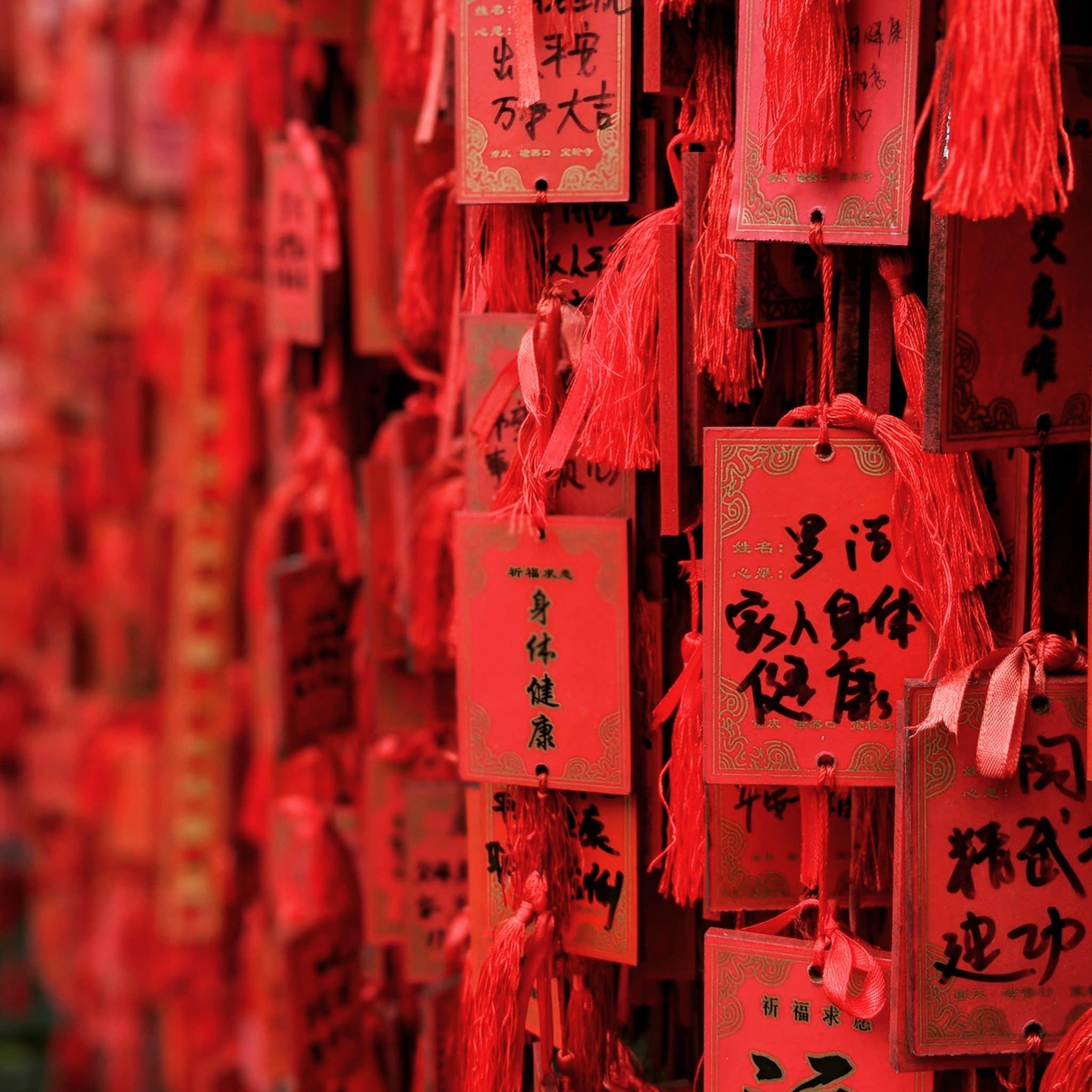 la nutricion desde el punto de vista de la medicina tradicional china